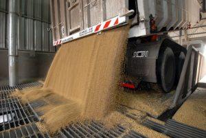 La Bolsa cordobesa calcula que la reducción de las retenciones a la soja va a representar unos 451 millones de dólares menos en la recaudación en 2018.